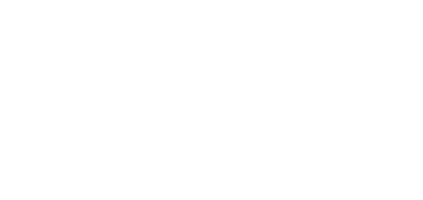 221 Surfside Holdings - Chinese